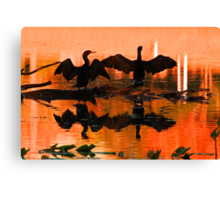Silhouetted cormorants in a florida sunset Canvas Print