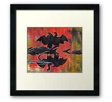 Synchronized silhouetted cormorants Framed Print
