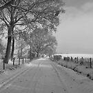 Frensham lane b/w by relayer51