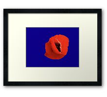 Poppy On Blue Framed Print
