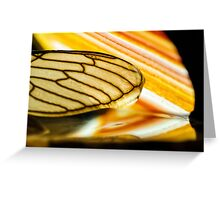 On Stolen Glass Greeting Card