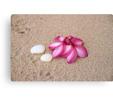 Flowers and Cockleshells on Sand Canvas Print