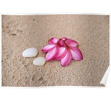 Flowers and Cockleshells on Sand Poster