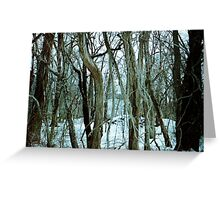 Follow in to The Woods Greeting Card
