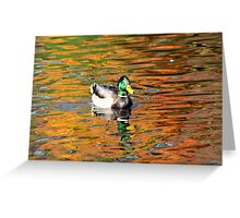 Duck in Fall Reflection 1 Greeting Card