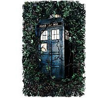 Police Box in The Garden Hoodie / T-shirt Photographic Print