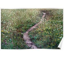 A Pretty Little Pathway Poster