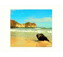 Childers Cove, Port Fairy Art Print