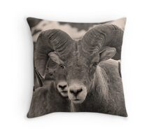 Rams are Close! (BW) Throw Pillow