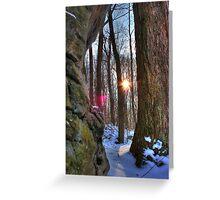 Rock Tree smash SUN Greeting Card