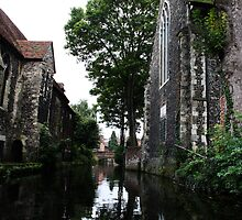 River Stour from a boat by Deb Gibbons