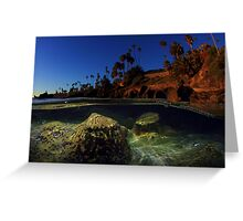 Laguna Dream Greeting Card