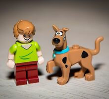 Shaggy and Scooby Doo by garykaz
