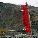 himalayan bridge. northern india by tim buckley | bodhiimages