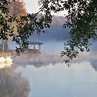 Autumn Fog - Lake Jackson - Covington, Georgia by Betty Northcutt