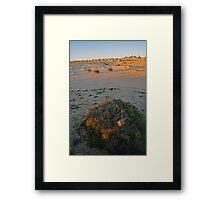 Mungo Evening Framed Print