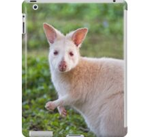 White Wallaby on Bruny iPad Case/Skin