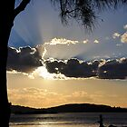Sunset Silhouette at Pelican NSW Australia by Bev Woodman