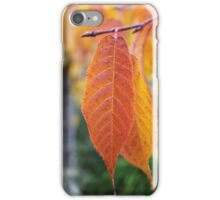 Twin Autumn Leaves iPhone Case/Skin