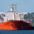 Eagle Carina  -  Crude Oil Tanker by Cecily McCarthy