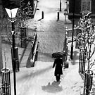 England Snow by Philip Cozzolino