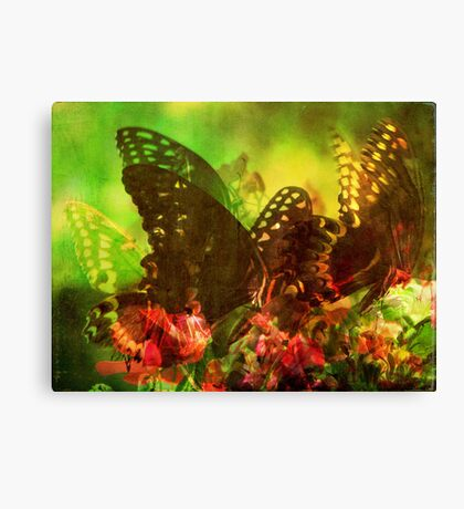Butterfly Kaleidoscope  Canvas Print