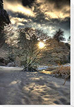 A county Down Winter Scene by Jonny Andrews