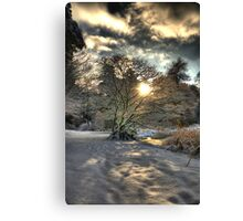 A county Down Winter Scene Canvas Print