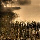Ard Mist (1) by Karl Williams