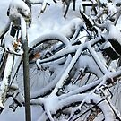 ColdBicycles by RosiLorz