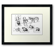 wolves and bears sketches Framed Print