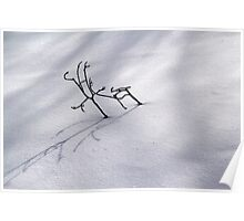 Small Branches in Snow Poster