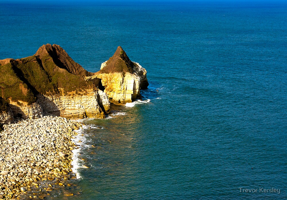 Yorkshire Coast at Thornwick Bay by Trevor Kersley