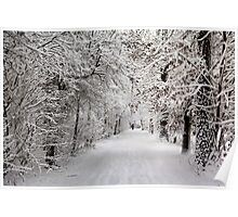 Winter Walk in  Fairytale Poster