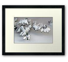 Bushes in Winter Series - 6 Framed Print