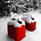 Gas Cans in Snow by Debbie Pinard