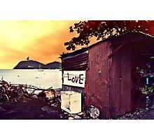 Love 2011  Photographic Print