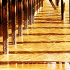 Shapely Pier by saleire