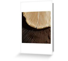Chocolate or Vanilla?  Choose! Greeting Card