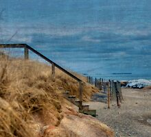 Old and Cold Cape Cod by Monica M. Scanlan