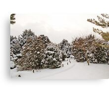 Late Afternoon Canadian Winter Scene Canvas Print