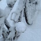 Snow Bicycle by Karen Martin IPA