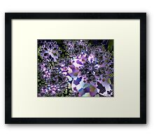 Let It Snow! Framed Print