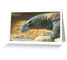 Komodo Dragon at Lowry Park Zoo Greeting Card