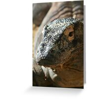 Komodo Dragon II at Lowry Park Zoo Greeting Card