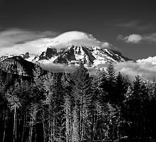 Mt Rainer  by Steve Biederman