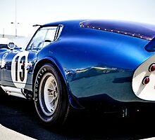 Shelby Cobra Racing Car by Roi  Brooks
