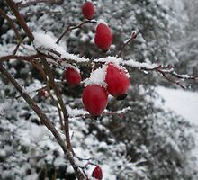 Red Icey Berries with Snowflakes by evissaboutique