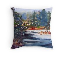 Algonquin Winter  (Ontario, Canada) Throw Pillow