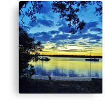 Wallaby on the beach Canvas Print